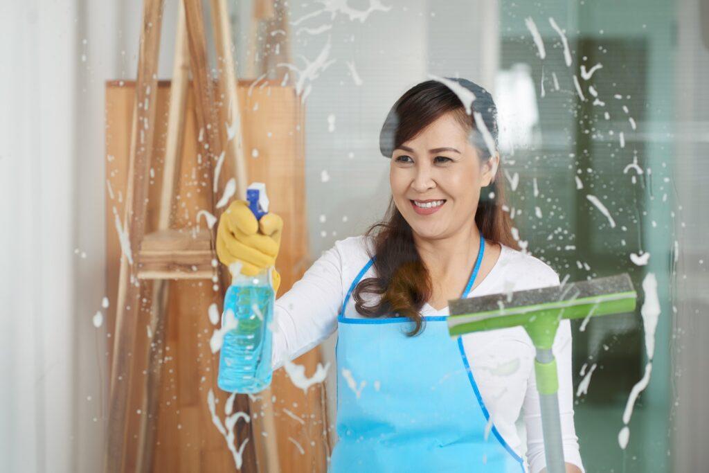 irving maid service 10